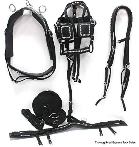 pony harness - 8