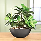 Rubber Tree Maintenance-free Artificial House Plant With Ceramic Pot, Black