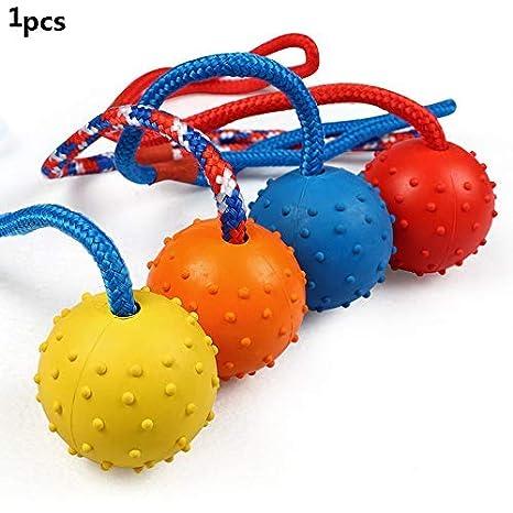 Frisbee - Pelota de Goma Indestructible en una Cuerda, para ...