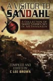 img - for A Visitor to Sandahl (Troubadour Tales) book / textbook / text book