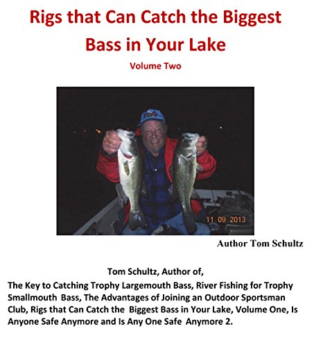 Ic Brush (Rigs that Can Catch the Biggest Bass in Your Lake: Volume 2 of my first book; New Title Rigs..)