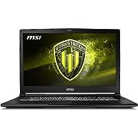 """MSI WE73293 Tablet_Computer, Wi-Fi, 17.3"""", AMD Athlon_Dual_Core 2.7GHz, 4GB, DDR3, 500GB, Dos"""