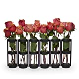 Danya B. QB280 Table Centerpiece - Large Metal and Glass Six-Tube Bud/Flower Vase Set - Hinged for Variable Arrangement