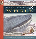 Big Blue Whale, Nicola Davies, 0613359070