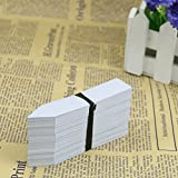HeroNeo New 100 Pcs 4Inch Plastic Plant Seed Labels Pot Marker Nursery Garden Stake Tags (Gray White)