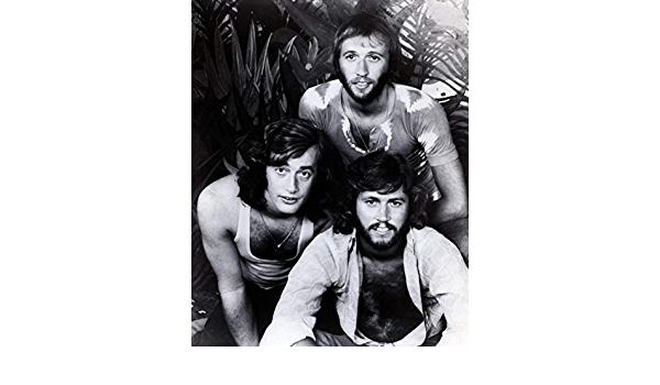 Barry /& Robin /& Maurice Gibb 8 x 10 8x10 Photo Picture IMAGE #5 *SHIPS FROM USA* Bee Gees