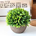 Carole4-Artificial-Plants-Plastic-Mini-Plants-Topiary-Shrubs-Fake-Plants-Fake-Flowers-Artificial-Flowers-Green-Grass-Pot-for-Wedding-Home-Garden-Party-Decoration