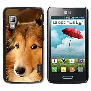 LASTONE PHONE CASE / Slim Protector Hard Shell Cover Case for LG Optimus L5 II Dual E455 E460 / Border Collie Smart Dog Canine Pet