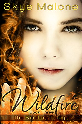 Wildfire (Kindling Trilogy Book 3)