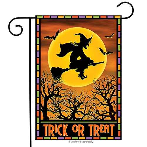 Briarwood Lane Full Moon Witch Halloween Garden Flag Full Moon 12.5