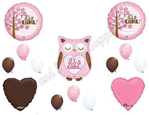 Baby Girl Owl Shower Balloons Decorations Supplies ()