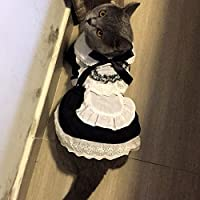 Alfie Pet by Petoga Couture - Teresa the French Maid for Party Halloween Special Events Costume
