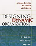 Designing Dynamic Organizations: A Hands-on Guide for Leaders at All Levels by Galbrai (1-Dec-2001) Paperback