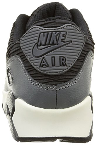Nike Kvinnor Air Max 90 Lthr Löparskor Svart / Mtlc Hematit / Drk Gry / Sl