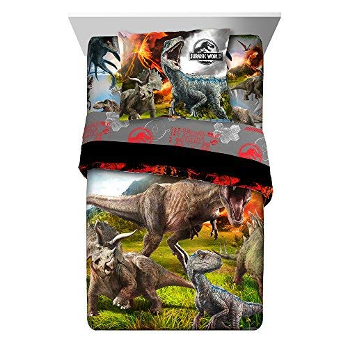 - TN 2 Piece Kids Orange Black Jurassic World Comforter Twin/Full Set, Dinosaur Themed Bedding T-Rex Raptors Pattern Reptiles Dino Movie, Reversible Polyester