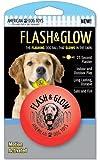 Flash and Glow, Flashing Glowing Dog Ball, My Pet Supplies