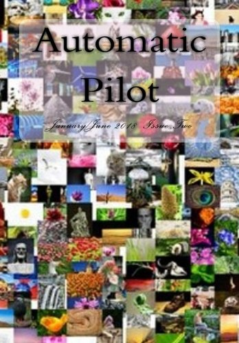 Automatic Pilot Issue Two