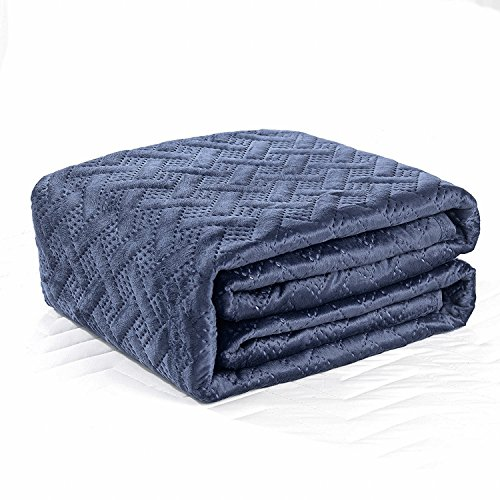 Hollyhome Super Soft Solid Blanket Microplush King Size