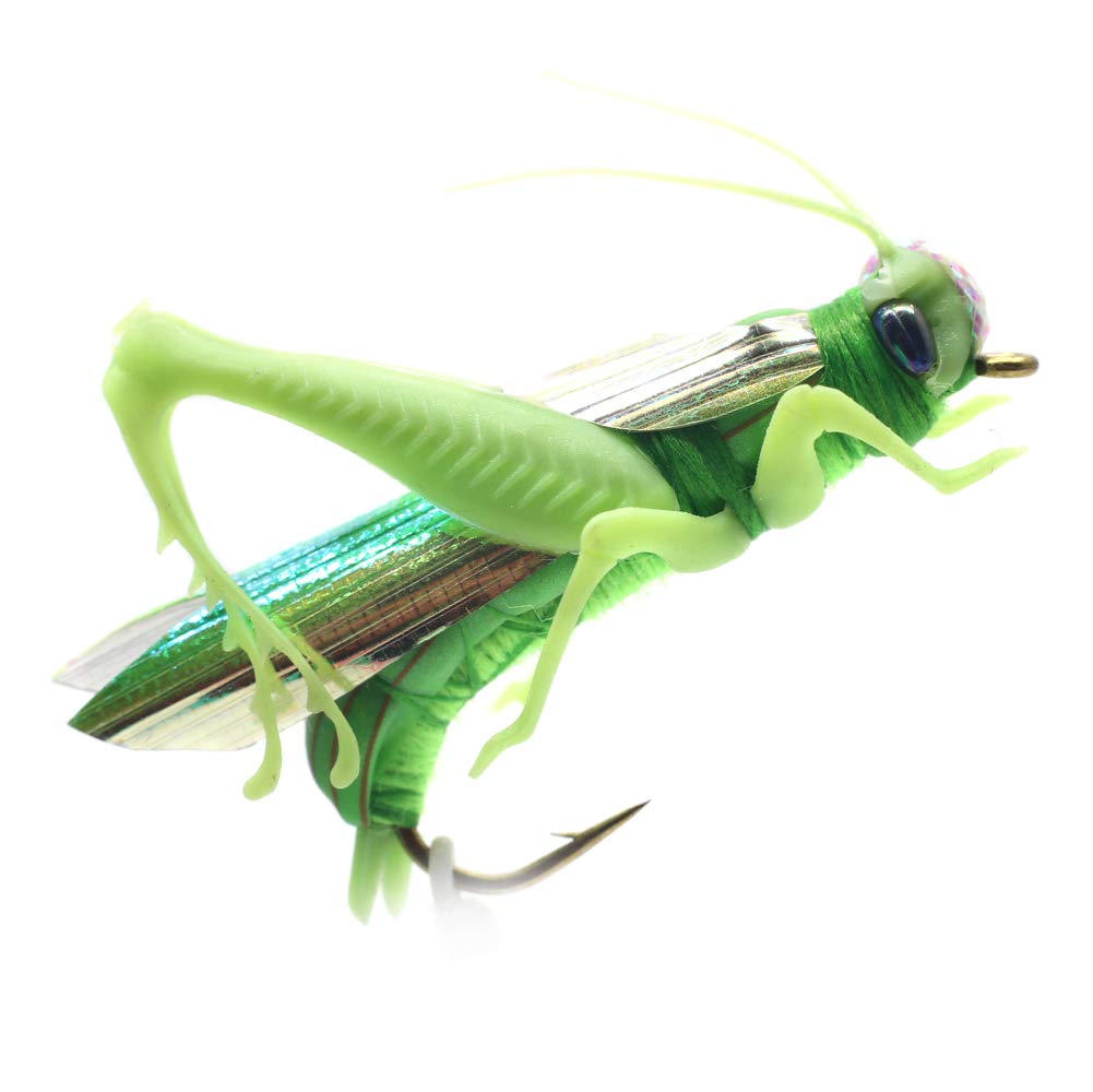 YZD Realistic Grasshopper Dry Fishing Flies Set of 12 Flies Cricket Hopper Fly Fishing Lure for Trout Pike Carp Flyfishing (Large A4 Green) by YZD
