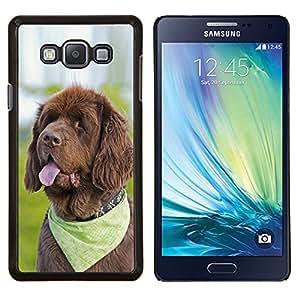 For Samsung Galaxy A7 A7000 Case , pes yazyk kosynka- Diseño Patrón Teléfono Caso Cubierta Case Bumper Duro Protección Case Cover Funda
