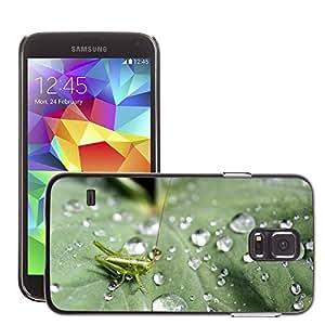 Etui Housse Coque de Protection Cover Rigide pour // M00112148 Saltamontes verde deja Naturaleza // Samsung Galaxy S5 S V SV i9600 (Not Fits S5 ACTIVE)