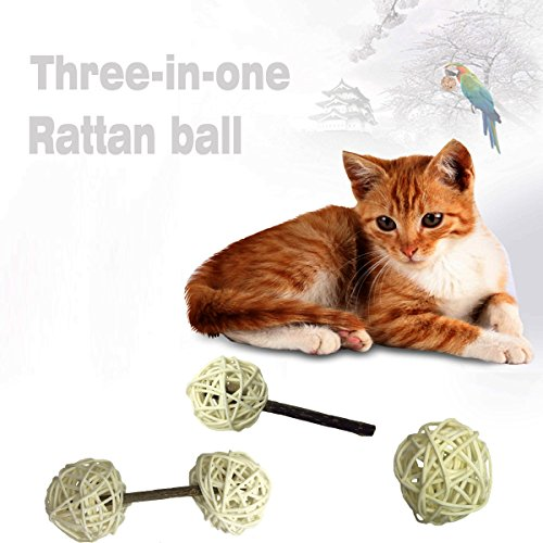 Pokeman Cat Ball Toy with Bell,Interactive Toy for Kitten Kitty,Made with Natural Wicker Rattan and Silvervine Catnip Stick