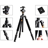 Andoer DSLR Camera Tripod - Professional Q999 Portable Travel Compact Monopod With Ball Head Adjustable Legs Magnesium Aluminium For Digital Canon Nikon Sony Olympus Pentax with Carrying Bag