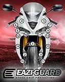 Eazi-Grip Triumph 675R Stone Chip Protection Clear Bra (13+)