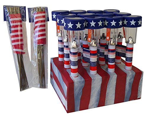 Patriot Lighting Solar Flag Light - 6