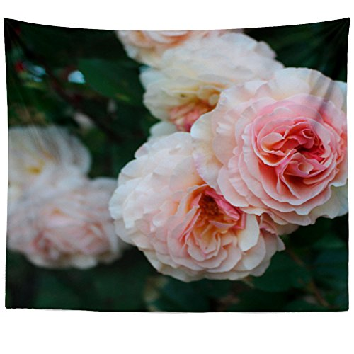 Westlake Art Wall Hanging Tapestry - Flower Rose - Photography Home Decor Living Room - 51x60in - Rose Petal Cottage Collection