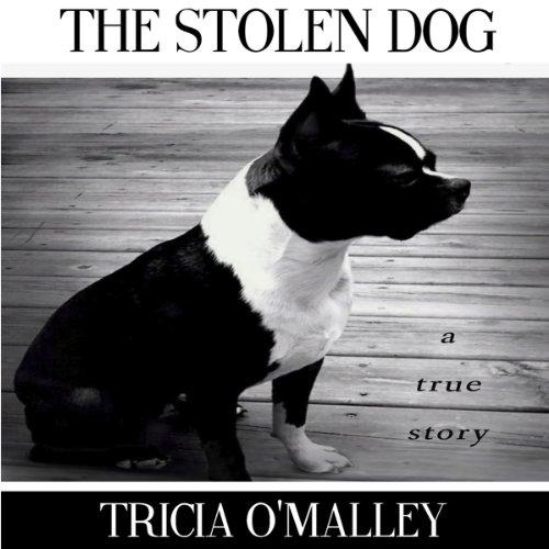 The Stolen Dog