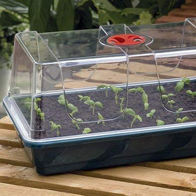 Garland Large High Dome Propagator (Clone Propagator)