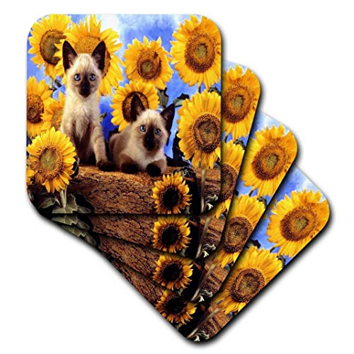 (3dRose cst_55174_3 Adorable Siamese Kittens N Sunflowers-Ceramic Tile Coasters, Set of 4)