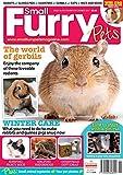 Small Furry Pets