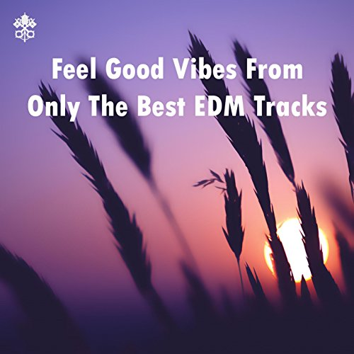 Feel Good Vibes From Only The Best EDM Tracks (Only The Best Edm)