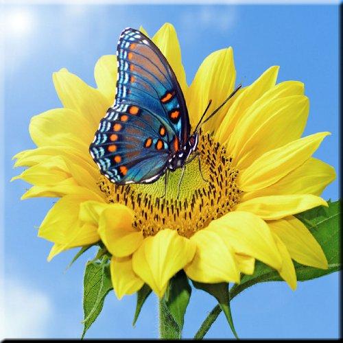 (Rikki Knight Blue Butterfly on Sunflower Design Ceramic Art Tile, 8