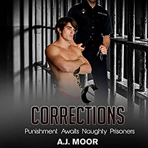 Corrections Audiobook