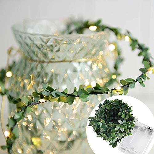 Wffo LED Lights, Heart Shape Fairy Hanging for Wedding Bedroom Patio Decor (A Green 1m)