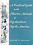 img - for A Practical Guide to the Marine Animals of Northeastern North America book / textbook / text book