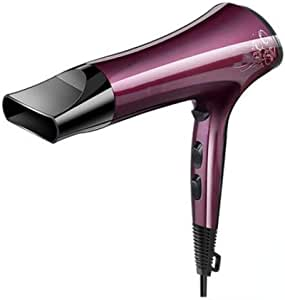 Hairdryer, home high-power Silent hairdryer, Quick drying constant temperature Portable Upgrade hairdryer 2200W