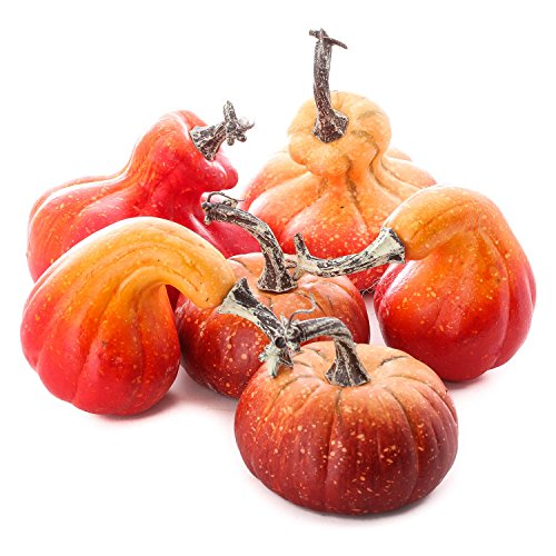Factory Direct Craft Package of 6 Faux Pumpkins and Gourds for Halloween, Fall and Thanksgiving Decorating