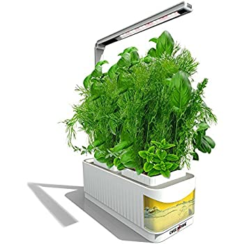 Amazon indoor hydroponic herb garden kit lamp desk lamp for indoor hydroponic herb garden kit lamp smart fresh herb garden hydroponics led growing system easy switch to desk lamp for reading seeds not included workwithnaturefo