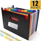 Grtard 12 Pockets Expanding File Folder File Folder Organizer Accordian File Organizer Portable A4 Letter Size File Box High Capacity Plastic Colored Paper Document Organizer