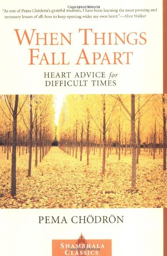 Image result for when things fall apart book cover