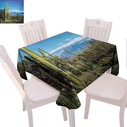 VICWOWONE Party Square Tablecloth Desert Feel Comfortable Wide View of The Tucson Countryside with Cacti Rural Wild Landscape Arizona Phoenix (Square,W54 x L54) Green Blue (Best Mexican Restaurants In Tucson)