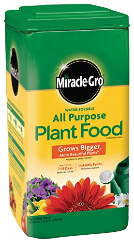 Miracle-Gro 4001234 Water Soluble All Purpose Plant Food, 6.25 LB