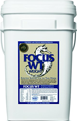 SOURCE Source Focus 573964 for Pets