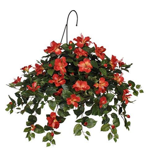 hanging tomato baskets - 2