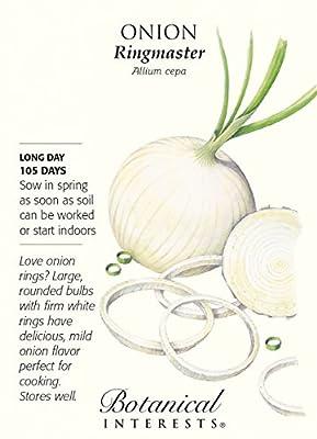 Ringmaster Onion Seeds - 1 gram - Allium