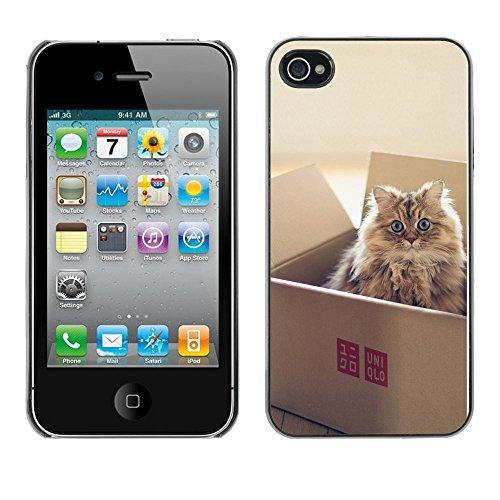 Omega Case PC Polycarbonate Cas Coque Drapeau - Apple iPhone 4 / 4S ( Cute Cat In A Box )